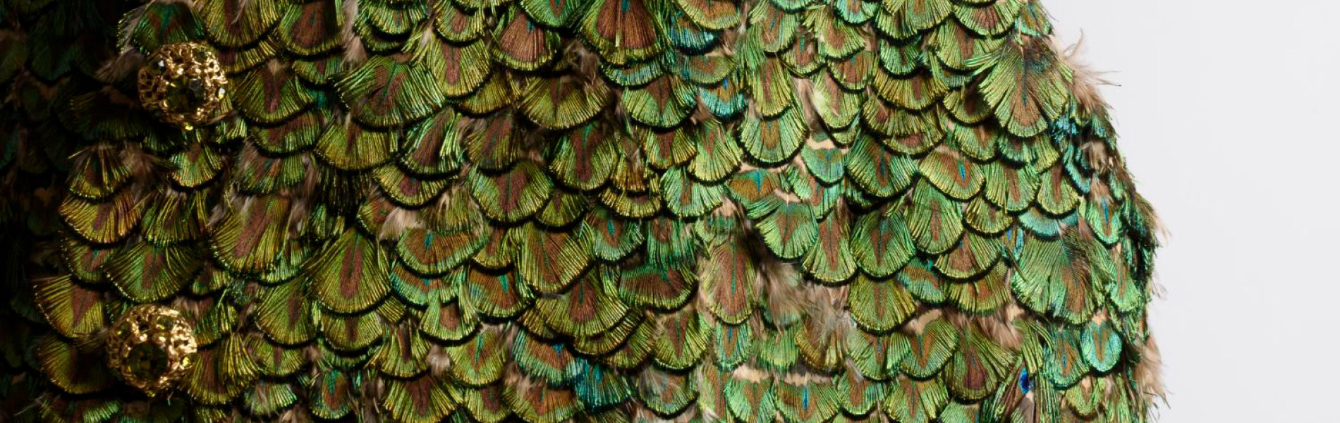 Detail of a green feathered vest with gold buttons